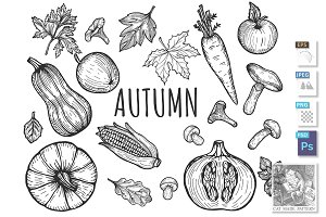 Autumn seasonal menu