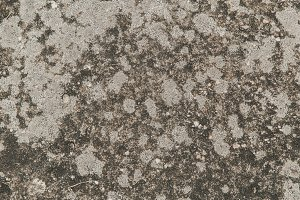 Grungy Cement Texture