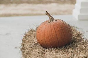 Pumpkin on Haystack
