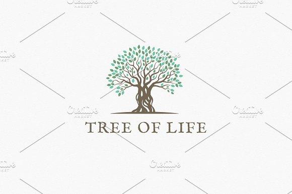 tree of life logo template logo templates creative market