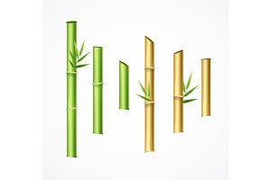 Green and Brown Bamboo Set. Vector