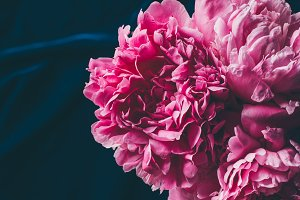 top view of pink peony flowers on da