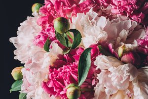 bouquet of beautiful pink peonies on