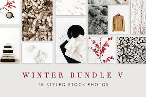 Winter Bundle 5