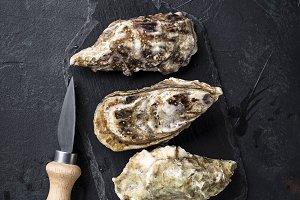 Fresh oysters on dark background