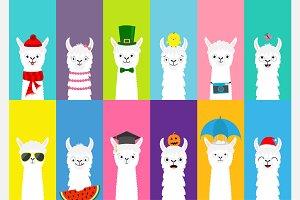 Llama alpaca set. All seasons.