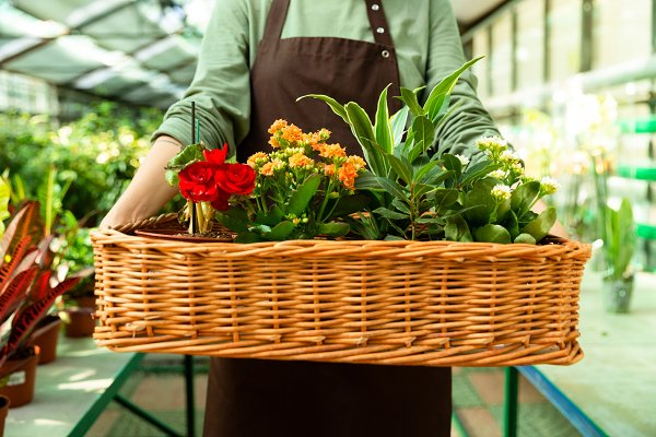 Cropped photo of florist woman 20s…