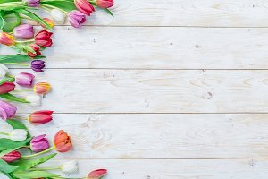Colorful tulips on white wooden tabl