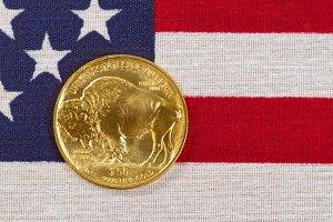 American Gold Buffalo on USA flag
