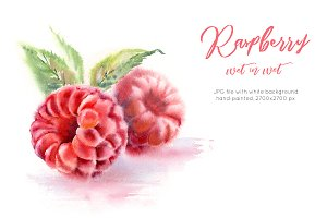 Raspberry. Watercolor painting