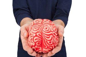 Human rubber brain between the hands