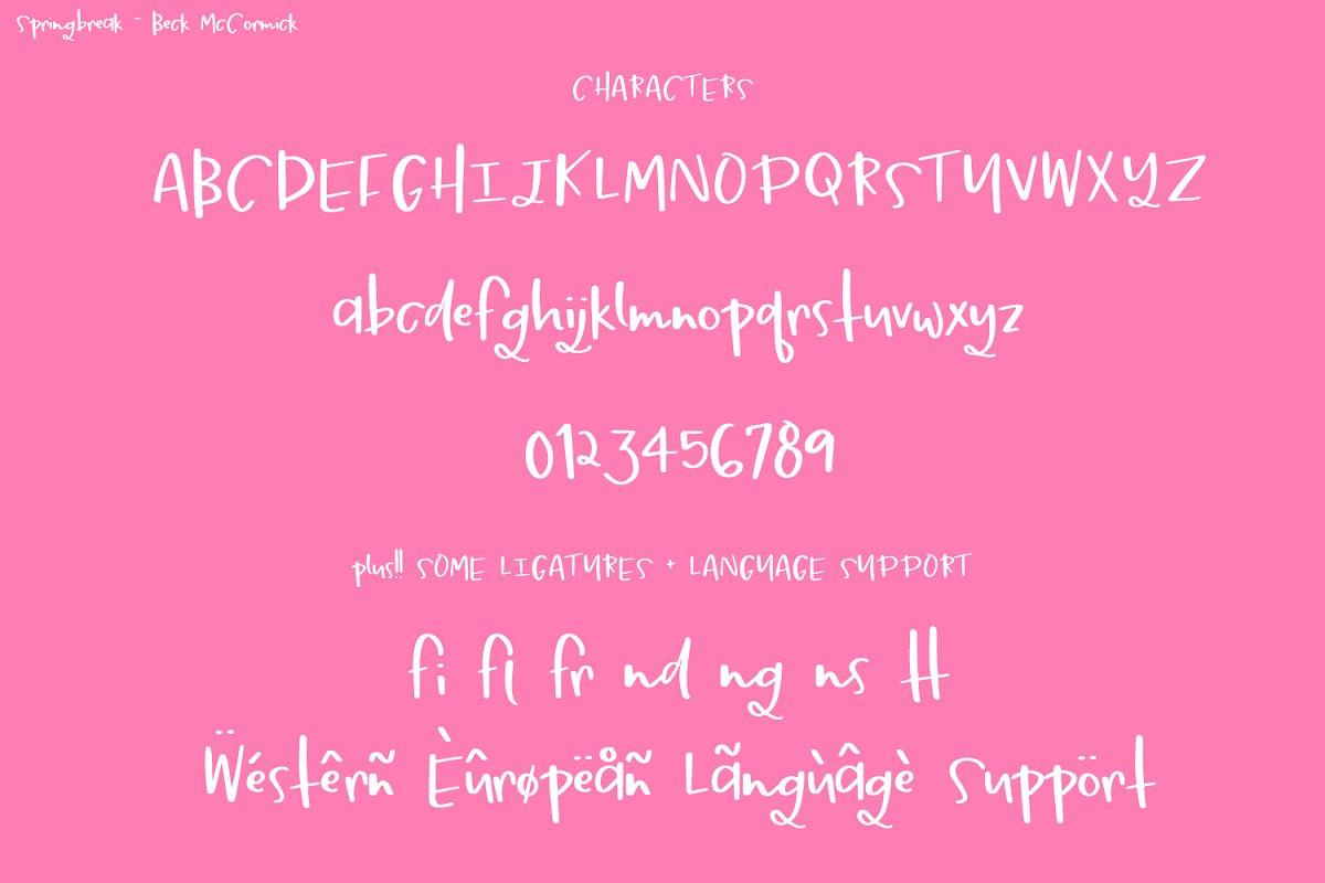 Springbreak Font in Script Fonts - product preview 7