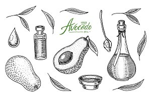 Tropical avocado. Set of
