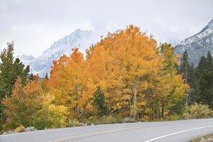 Autumn in Eastern Sierra