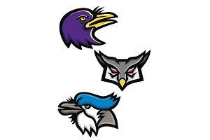 American Birds Sports Mascot Collect