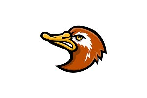 Laysan Duck Head Mascot