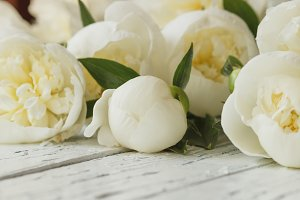 Bouquet of white peonies on the old