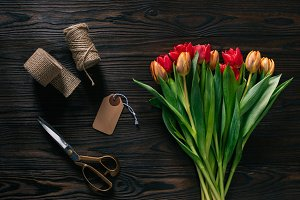 top view of arranged tulips, rope, s