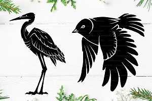 Bird Logo Templete