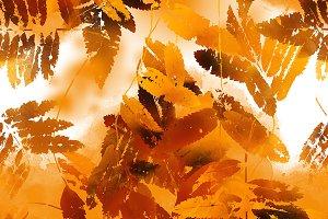 fallen leaves pattern | JPEG