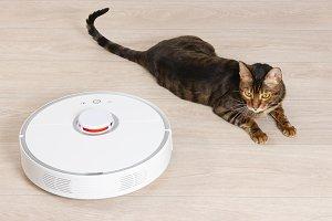 Robotic vacuum cleaner and cat