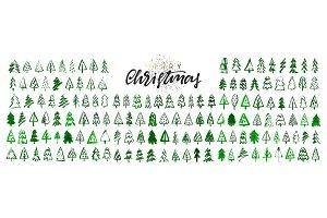 Green pine tree.