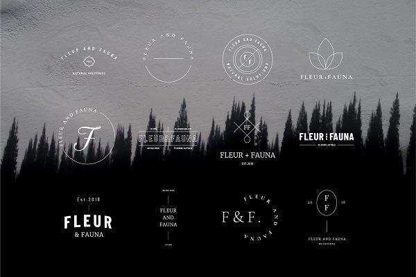 Templates - 50 Modern Delicate Logos Brand Kit