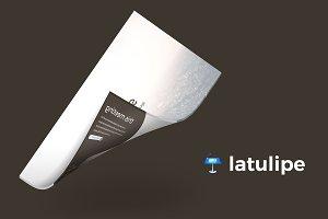 Latulipe- Keynote Template