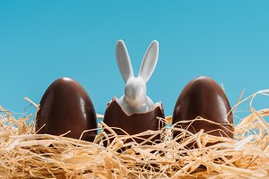 easter bunny in chocolate eggs on st