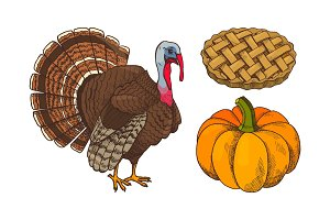 Pumpkin and Turkey Baked Pie Icons