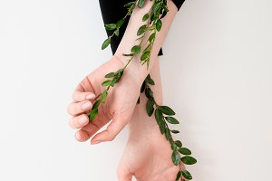 Woman's hands with green leaves