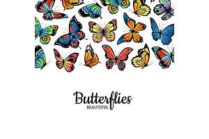 Vector decorative butterflies
