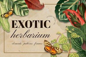 Vintage exotic herbarium design set