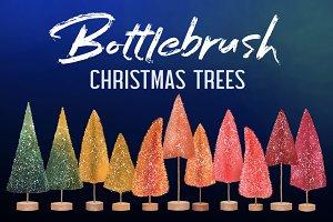 BOTTLEBRUSH CHRISTMAS TREES Pack