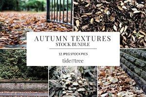 Autumn Textures Set