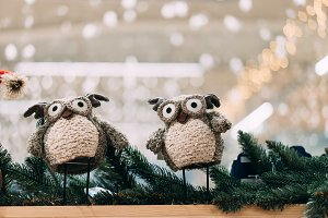 two cute toy owl on fir branch. wint