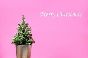 Mini Christmas tree on pink