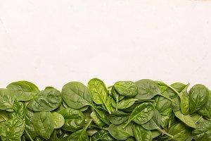 Healfy fresh mini spinach on old