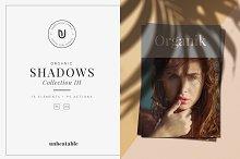 Organic Shadows Collection III