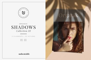 Organic Shadows Collection III