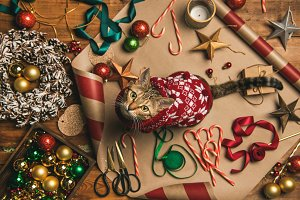 Flat-lay of Christmas decorations
