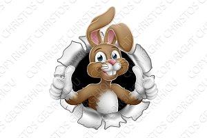 Easter Bunny Thumbs Up Rabbit