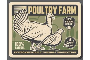 Poultry farm meat market products