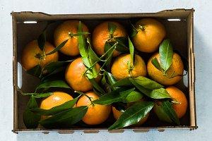 banner of Fresh mandarin oranges fru