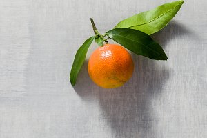 one tangerine on the table. copy spa