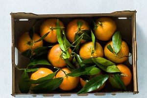 Fresh mandarin oranges fruit or tang