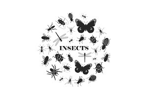 Black insect silhouettes