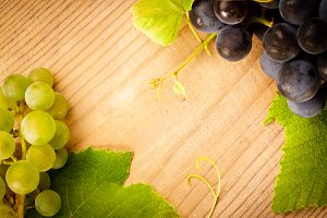 Different grapes with green leaves o