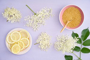 Ingredients for making elderflower s