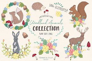 Woodland Animals Clipart Collection